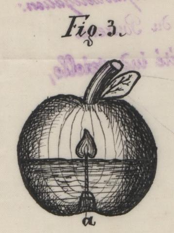Brevet d'invention n° 170351 déposé le 28 juillet 1885 par François-Emile Berta pour un procédé pour éclairer des objets artificiels tels que fleurs, fruits, grappes, etc., destinés à orner des arbres de Noël